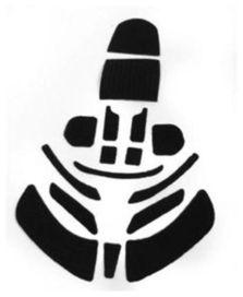 Kit velcro leatt brace